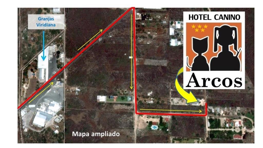 Hotel Canino Arcos - Cómo llegar